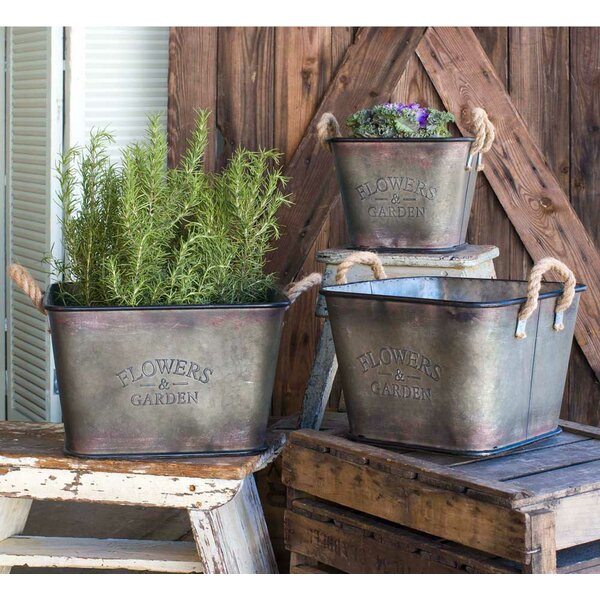 Herberts Metal 3 Piece Metal Planter Set by Gracie Oaks