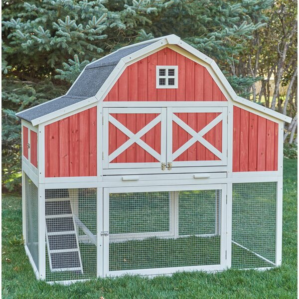 Barn Chicken Coop with Roosting Bar by Chicken Sal