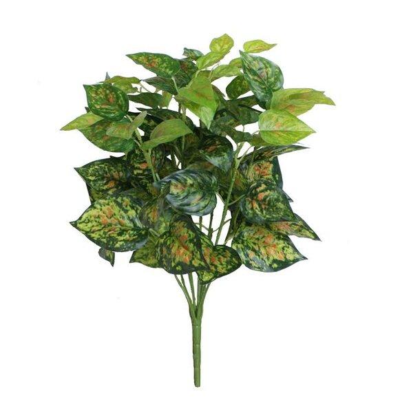 Decorative Artificial Dieffenbachia Floral Bush by Northlight Seasonal
