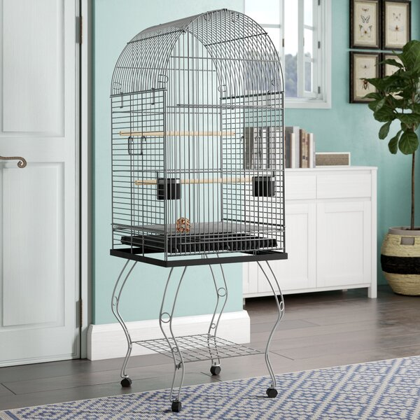 Harlan Dome Top Parrot Bird Cage with Stand by Tucker Murphy Pet