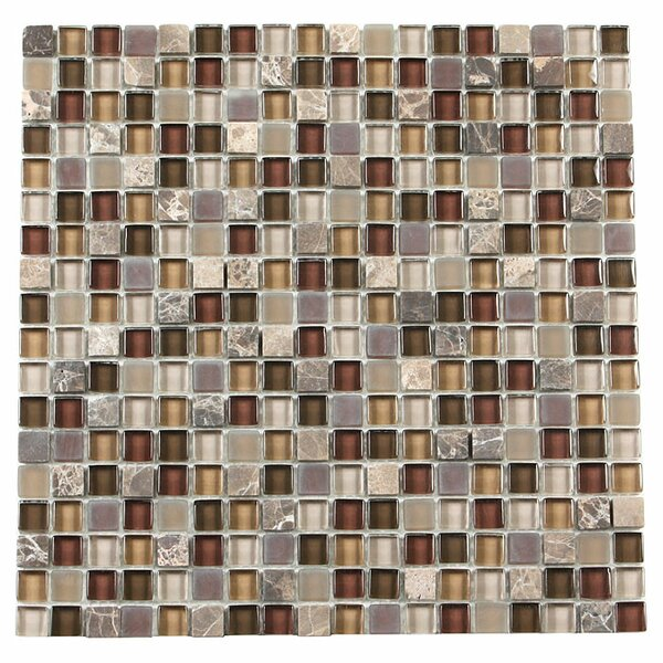 Paragon 12 x 12 Glass Mosaic Tile in Sable Mixed by Kellani