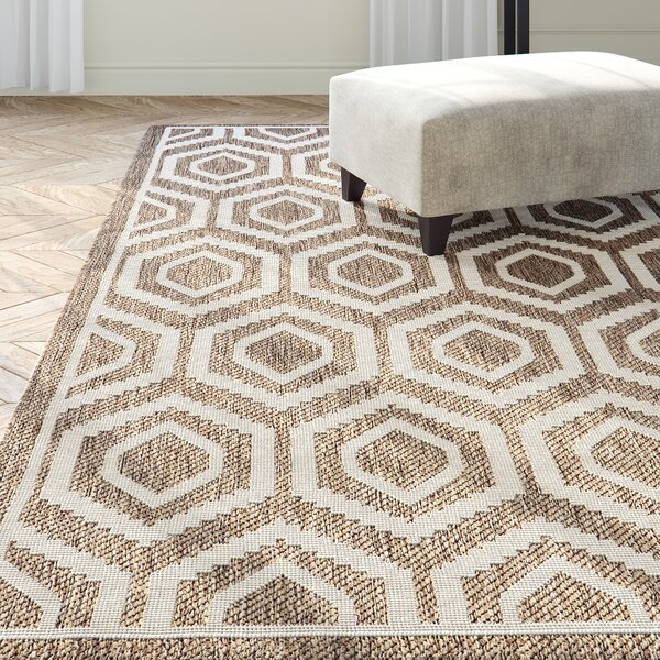 Miami Brown/Tan Indoor/Outdoor Area Rug by Langley Street