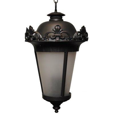 Petrey 4 Light Outdoor Hanging Lantern Alcott Hill Finish Black