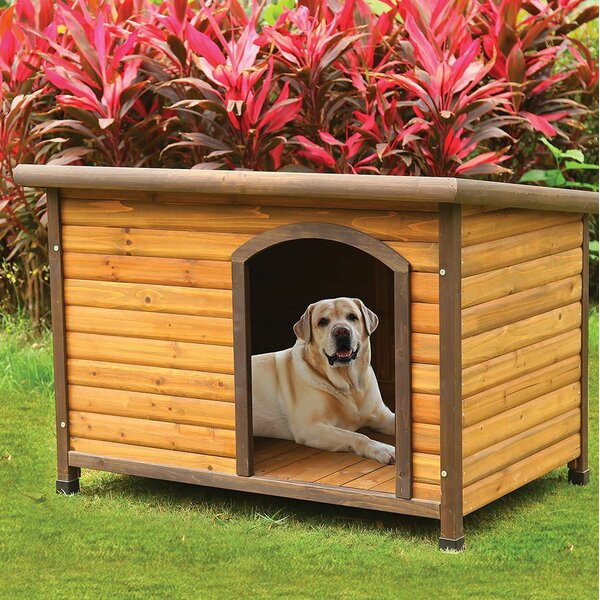 Lories Dog House by Andrew Home Studio