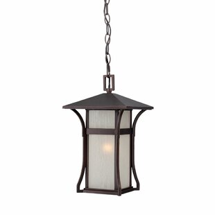 Read Reviews Heriberto 1-Light Hanging Lantern By Bloomsbury Market
