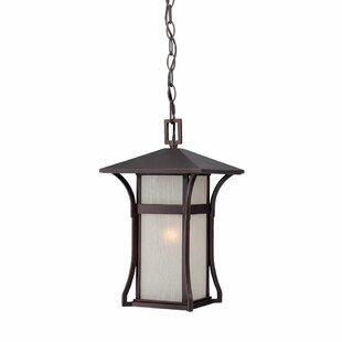 Affordable Heriberto 1-Light Hanging Lantern By Bloomsbury Market