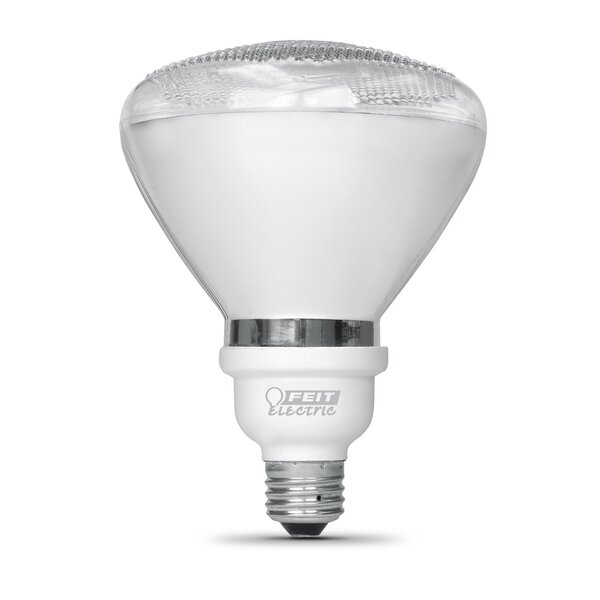 18W (2700K) Fluorescent Light Bulb by FeitElectric