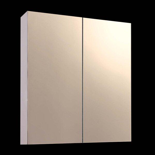 Damarion 24 x 36 Surface Mount Frameless Medicine Cabinet by Orren Ellis