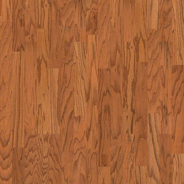 3-1/4 Engineered Oak Hardwood Flooring in Butter Rum by Wildon Home ®
