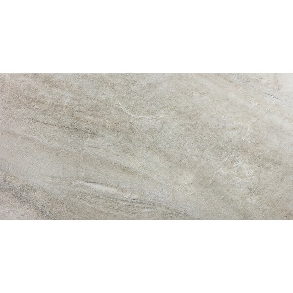 Enrichment 12 x 24 Porcelain Field Tile in Tan by Parvatile