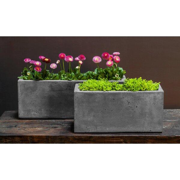 Sabatini Medium 4-Piece Fiber Cement Pot Planter Set by Brayden Studio