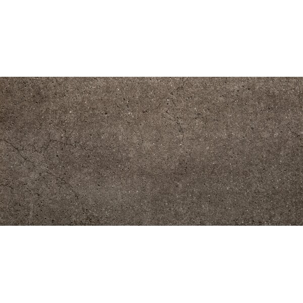 Rio Grande 12 x 24 Porcelain Field Tile in Stream by Emser Tile
