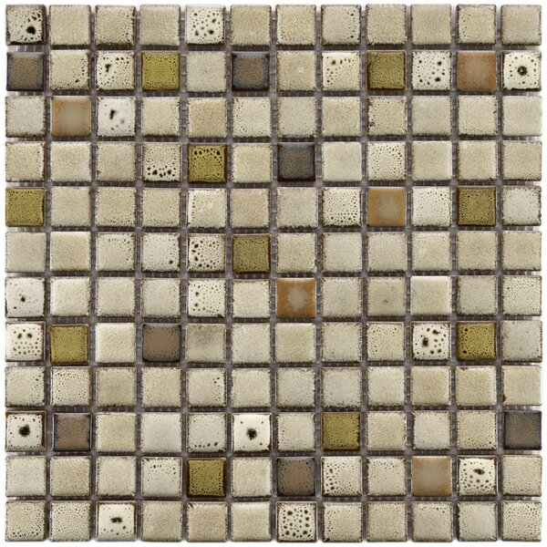 Essentia 0.91 x 0.91 Porcelain Mosaic Tile in Sierra by EliteTile
