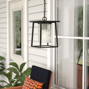 Affordable Bissonnette 1-Light Outdoor Hanging Lantern By Mercury Row