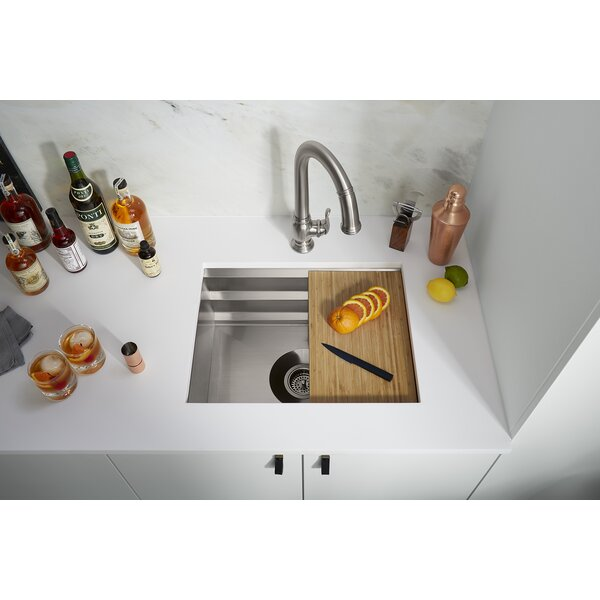 Prolific 23 in x 17-3/4 in x 10 in Under-Mount Single-Bowl Kitchen Sink with Accessories by Kohler