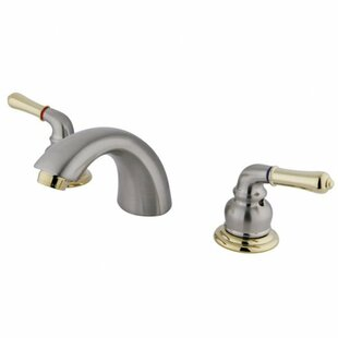 Widespread faucet Bathroom Faucet with Drain Assembly ByElements of Design