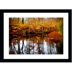 'Fall Colors 2 on a Pond' by Jobe Waters Framed Photographic Print by Buy Art For Less