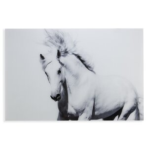 'White Horse II' Photographic Print by Latitude Run