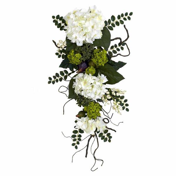 Hydrangea Teardrop by One Allium Way