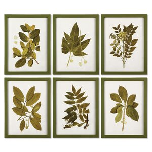 'Spring Leaves' 6 Piece Framed Graphic Art Set by Gracie Oaks