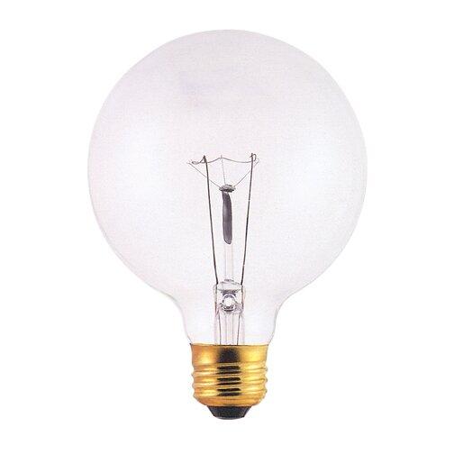 130-Volt Incandescent Light Bulb (Set of 24) by Bulbrite Industries