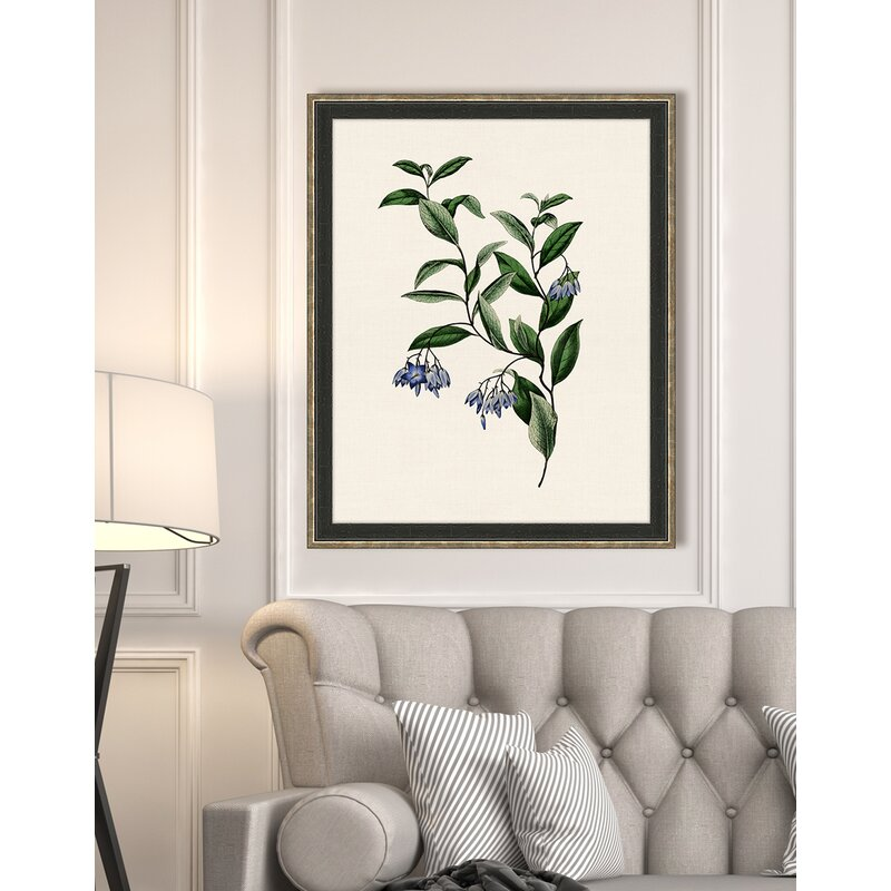 Gracie Oaks \'Van Geel Small Flowers\' Framed Graphic Art Print | Wayfair