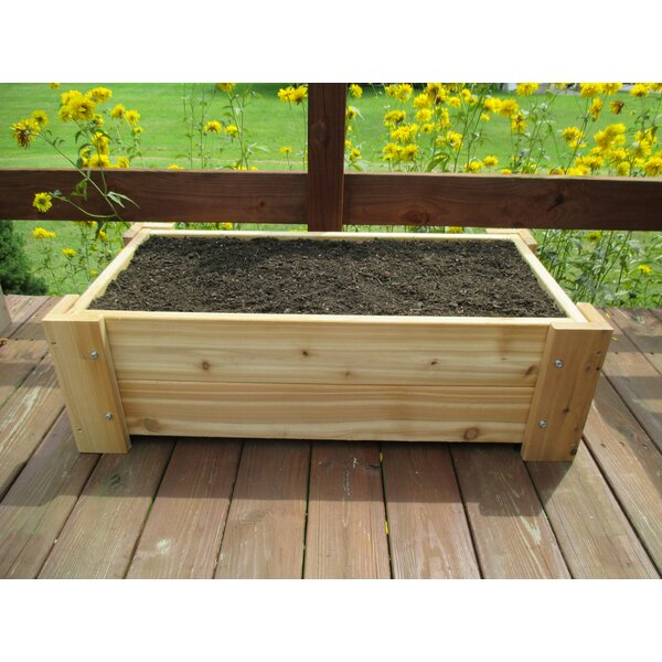 Helena Premium Quality Rectangular Planter Box by Millwood Pines