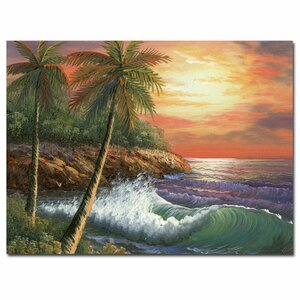 'Maui Sunset' by Rio Painting Print on Canvas by Trademark Fine Art