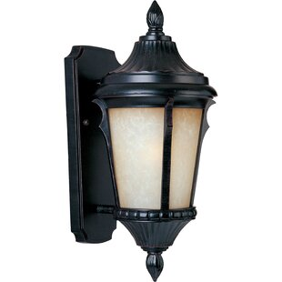 Find a Jeffers 1-Light Outdoor Sconce By Astoria Grand