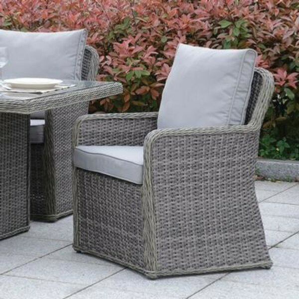 Caputo Patio Chair with Cushions (Set of 2) by Darby Home Co