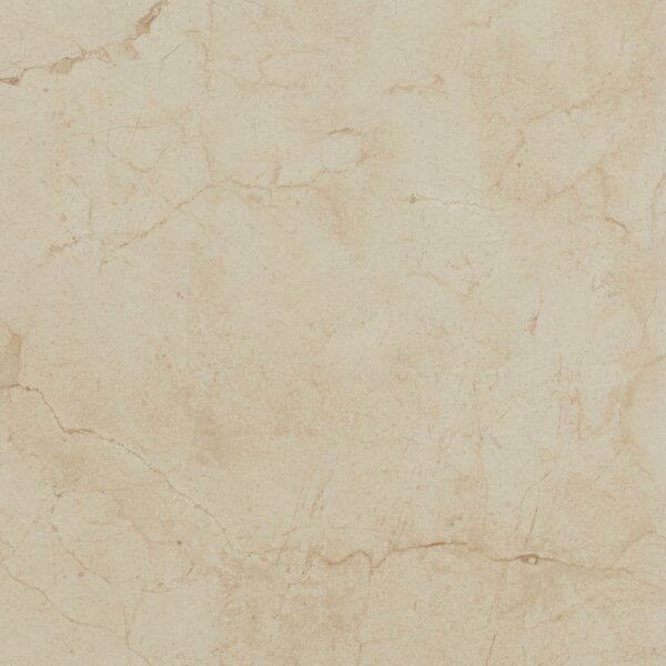 Florentine 10 x 14 Porcelain Field Tile in Marfil by Daltile