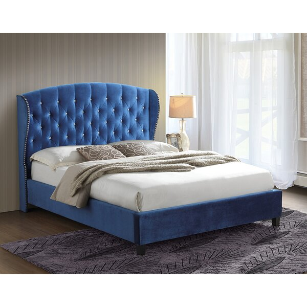 Lutie Classic Queen Upholstered Platform Bed by Everly Quinn