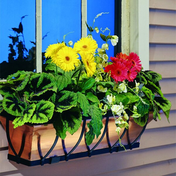 Wrought Iron Window Box Planter by H. Potter