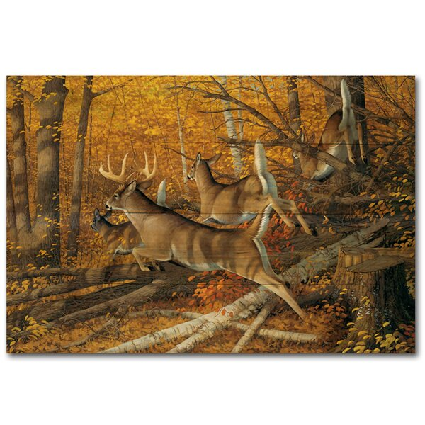 Maple Rush Painting Print Plaque by WGI-GALLERY