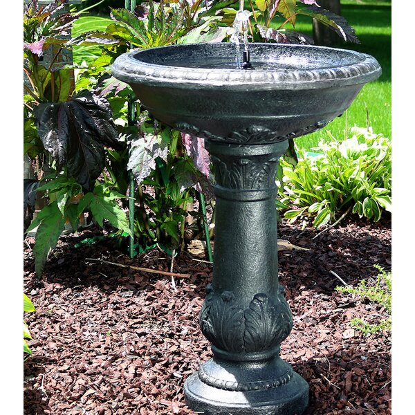 Maidenhead Fiberglass Solar Bird Bath Water Fountain by Fleur De Lis Living