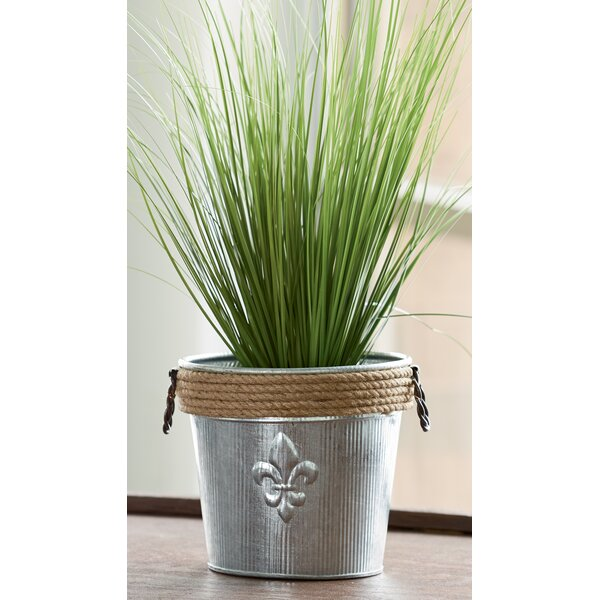 Catharine Jute Rope Wrapped Galvanized Bucket by Ophelia & Co.