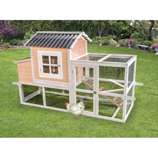 Premium + Big Dutch Barn Chicken Coop by Ware Manu