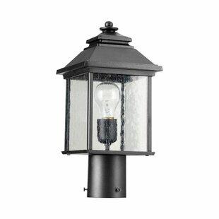 Great choice Hampstead Outdoor 1-Light Lantern Head By Three Posts