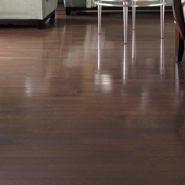 Color Strip 3-1/4 Solid Oak Hardwood Flooring in Smoke by Somerset Floors