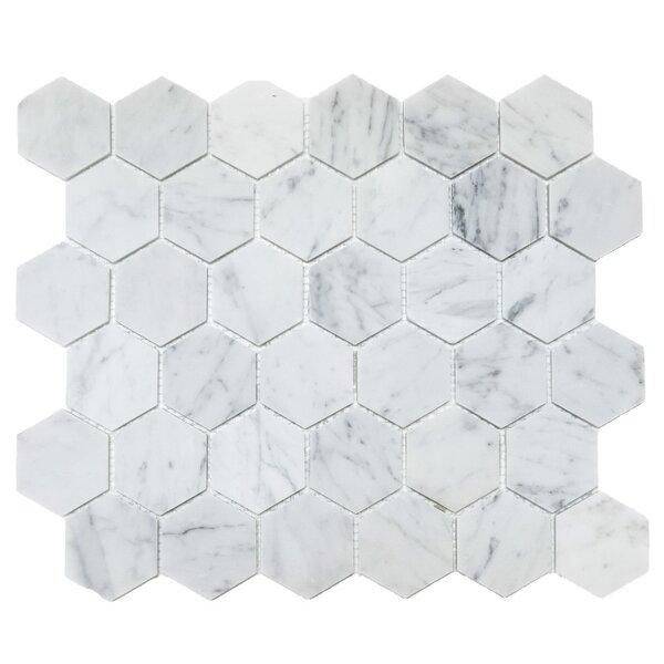Honeycomb Hex Honed 2 x 2 Mosaic Tile in Bianco Carrara by Ephesus Stones