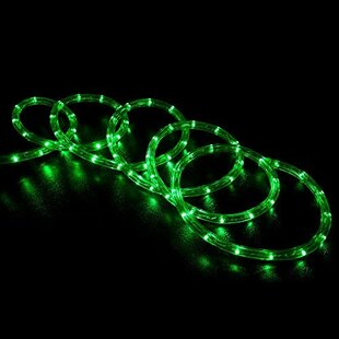 Bargain Eder LED Rope Light By The Holiday Aisle