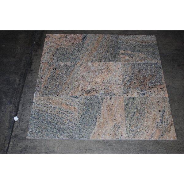 Viara Polished 12x12 Granite Field Tile