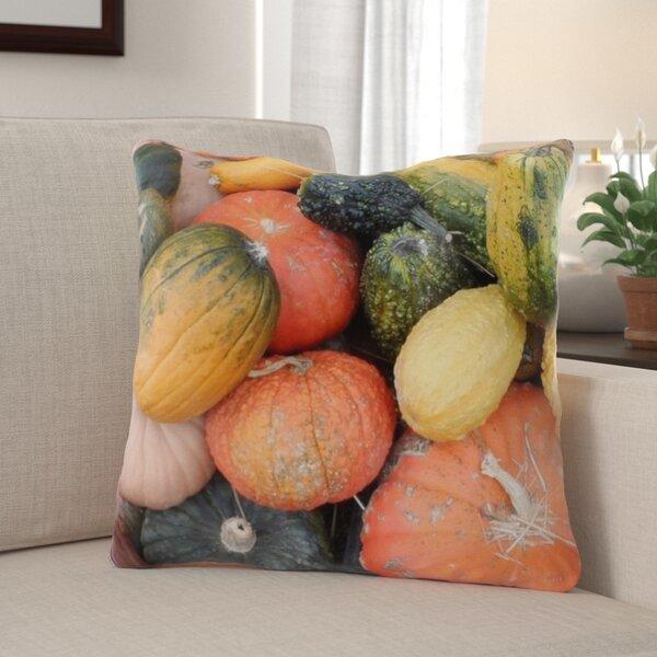Nasser Pumpkin Indoor/Outdoor Throw Pillow
