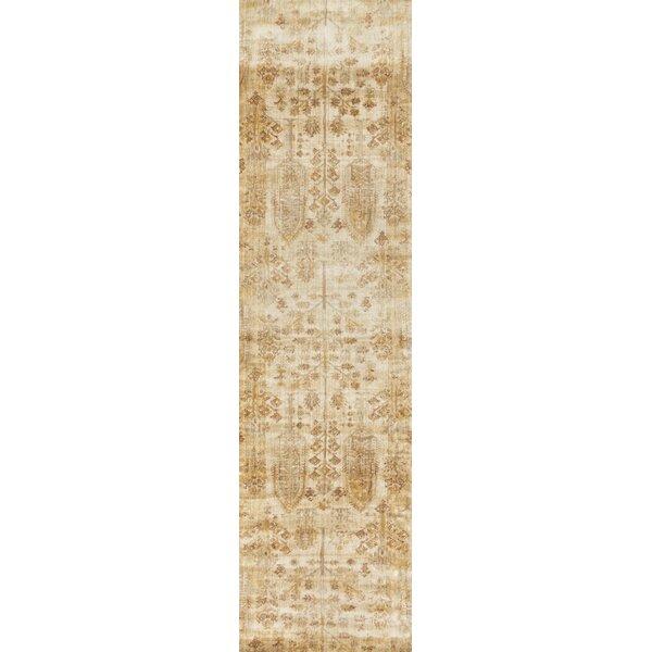Zehner Ivory/Gold Area Rug by Bloomsbury Market