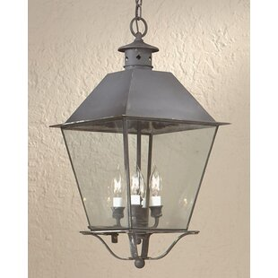 Shopping for Theodore 4-Light Outdoor Hanging Lantern By Darby Home Co