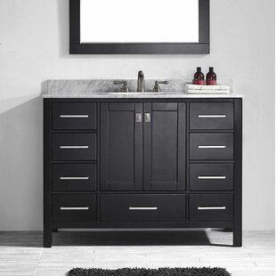 Save Brayden Studio Pichardo 42 Single Bathroom Vanity Set