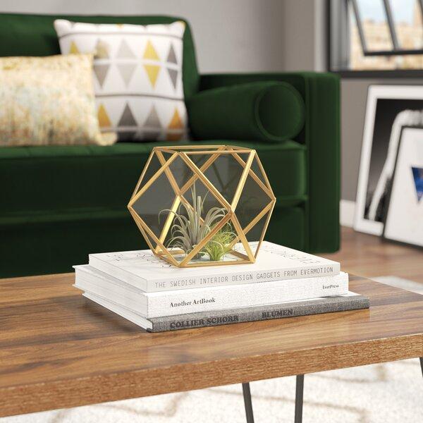 Vanatta Glass Terrarium by Mercury Row