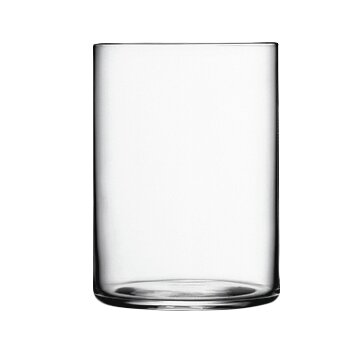 Top Class 16 oz. Crystal Highball Glass (Set of 6) by Luigi Bormioli