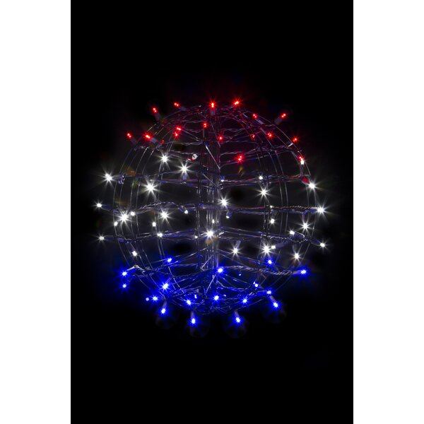 Fold Flat Sphere Net Lights with 75 LED Lights by The Holiday Aisle