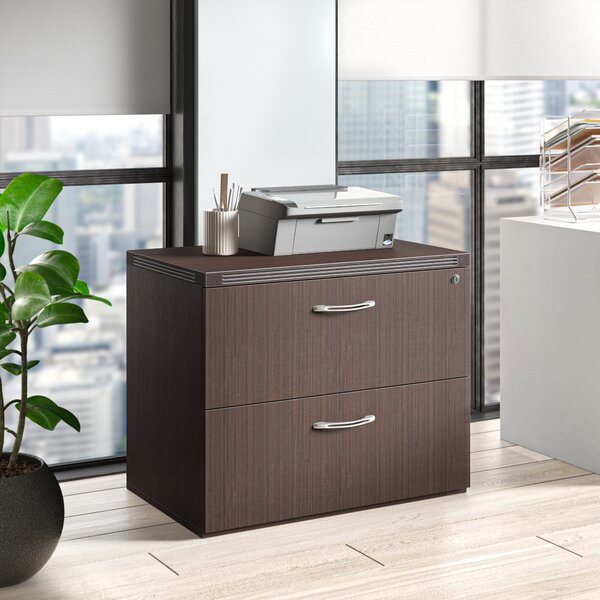 Umstead Freestanding 2-Drawer Lateral Filing Cabinet